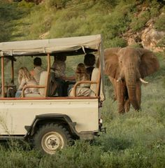 Game drive, Saruni Samburu, Kenya