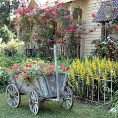 antique goat cart with flowers