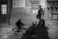 Weekly theme: Bicycle - 7