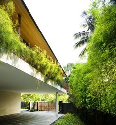 Glazzed Pool. Tangga House by Guz Architects ||► Read More http://design--daily.blogspot.com/2012/10/tangga-house-by-guz-architects.html