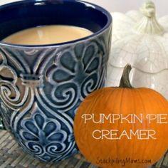Homemade Pumpkin Pie Creamer - STOCKPILING MOMS™ Pumpkin Spice Creamer, Vanilla Coffee Creamer, Coffee Creamer Recipe, Homemade Pumpkin Puree, Canned Pumpkin, Pumpkin Recipes, Fall Recipes, Yummy Recipes, Bon Appetit