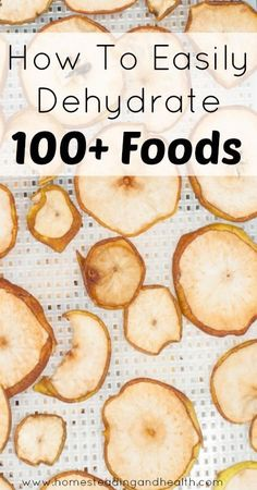 dehydrating guide for 100  foods