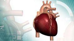 Cientistas criam forma mais precisa de detectar níveis de colesterol 'ruim'  Novo método, desenvolvido em universidade americana, pode ajudar a identificar pacientes com alto risco para doenças cardíacas