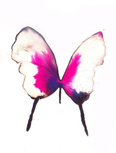 bright shocking pink and white gold butterfly. original watercolour painting