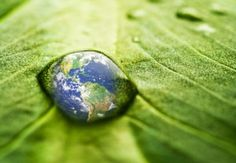 Love the Earth.