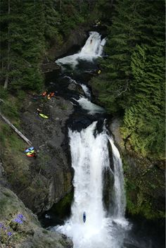 Kayaking the Salmon River Gorge in Northwest Oregon.  Two waterfalls at 30ft+ and 100ft+.  Lots of action in this montage image!