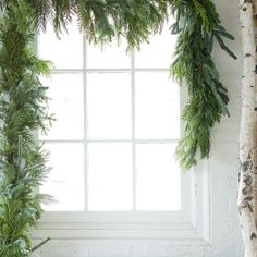 Noble Fir Mix Garland ($148) ❤ liked on Polyvore featuring home, home decor, holiday decorations, christmas, window, xmas, green, thanksgiving home decor, green home decor and outside home decor