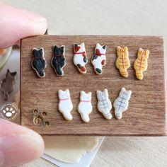 Miniature dollhouse cat iced biscuits