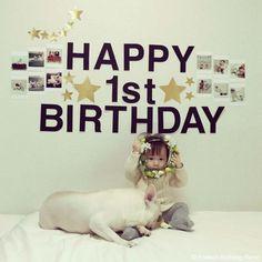 Happy 1st Birthday♥️ #frenchbulldog #frenchie #dog #daughter #babygirl #フレンチブルドッグ #女の子 #誕生日