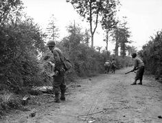 D-Day Liberation of France. Hedgerow fighting.
