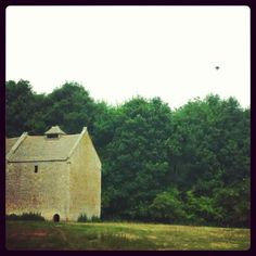 A grey Heron flying past the Dovecote