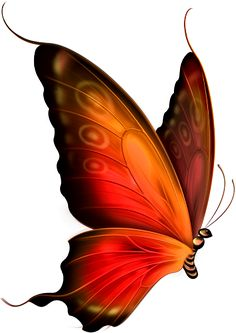 Diy Discover Schmetterling The post Schmetterling Butterfly Clip Art Butterfly Drawing Butterfly Pictures Butterfly Wallpaper Butterfly Painting Butterfly Kisses Orange Butterfly Butterfly Artwork Pinguin Tattoo Butterfly Clip Art, Butterfly Drawing, Butterfly Pictures, Butterfly Painting, Butterfly Wallpaper, Orange Butterfly, Butterfly Artwork, Butterfly Kisses, Pinguin Tattoo