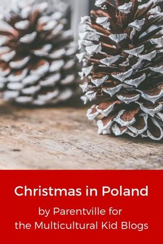 How much do you know about Christmas in Poland? Here are 10 Polish Christmas traditions you probably hadn't heard of, including hay under the tablecloth! Christmas Crafts Around The World, Holidays Around The World, Paper Christmas Ornaments, Christmas Holidays, Christmas Decorations, Christmas Cards, Polish Christmas Traditions, Holiday Traditions, Polish Holidays