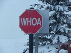 This is a stop sign at Spruce Meadows (Calgary)...cracked me up when I saw it!!