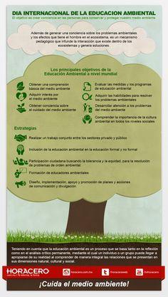 El 26 de Enero se celebra el Día Mundial de la Educación Ambiental, que tiene como principal objetivo identificar la problemática ambiental tanto a nivel global, como a nivel local y crear conciencia en las personas y muy especialmente en los gobiernos en cuanto a la necesidad de participación por conservar y proteger el medio ambiente