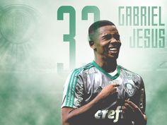 Palmeiras - 2016