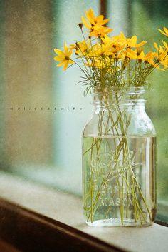 wild flowers in a ball jar... wow... jh
