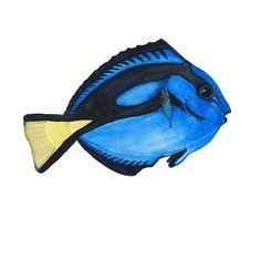 Blue Tang Art Print of Watercolor Tropical Fish Painting
