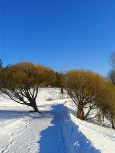 Talvi Tuorlassa 2013