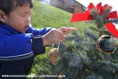 Winter Outdoor Tree Decorating for the Birds