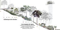 L-A-P, primer lugar por plan maestro del cerro La Asomadera en proyecto que transformará Medellín