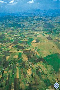 Mosaico agrícola en el altiplano de Tunja (Boyacá, Colombia), donde predomina el cultivo intensivo de la papa.  Fotógrafo: Santiago Montes