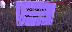 Ist Narzissmus heilbar? | Der Schutzgarten Neon Signs, Motivation, Psychology, Reading, Inspiration