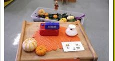 We have a field trip planned to the real pumpkin patch this week so in preparation for it we set up a pretend pumpkin patch.  I decided to o...