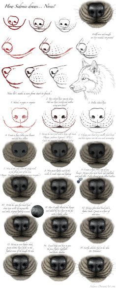 Eye Drawing Tutorial Wolf Ideas For 2019 Nose Drawing, Furry Drawing, Painting & Drawing, Wolf Eye Drawing, Animal Sketches, Animal Drawings, Art Sketches, Wolf Drawings, Sketches Tutorial