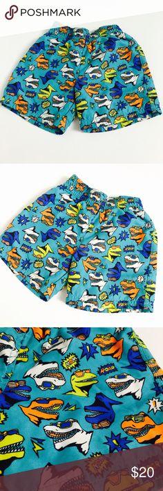 831db009bd7 Retro Color Dinosour Swim Shorts! Size 2T! kids corner Swim Swim Trunks Kids  Corner