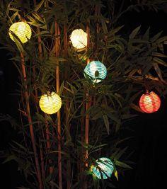 lampions et bambous
