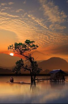 Coffeenuts, sunset, sunrise, water, solitude, clouds, reflections, beauty of Nature, sunbeams, stunning, tree, silhouettes, peaceful, silence