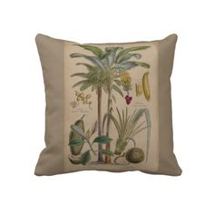Antique Botanical Print - Tropical Fruit Throw Pillows