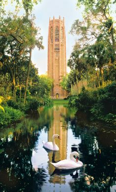 """Growing up we called this """"The Singing Tower"""", now it is known as the BOK Tower Gardens and Sanctuary, Lake Wales, Florida. Beautiful wildlife sanctuary and is the highest point in Florida. Visit Florida, Old Florida, Florida Vacation, Florida Travel, Central Florida, Lake Wales Florida, Florida Trips, University Of Florida, Coral Castle"""