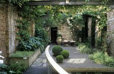 Interior courtyard with vines and ivy. Just not those bulbous shrubs in the center.