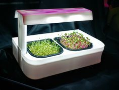 SALE !!! MicroFarm ONE+ LED countertop Grow Unit, with fullly stocked Farmacy Line of Nutrition Based Crop Medicines - MicrogreenFarm.co