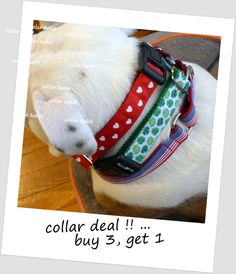 Dog Collars - Buy ANY THREE, Get ONE for 1.00 ! - Read the Details !! by CollarHabit on Etsy