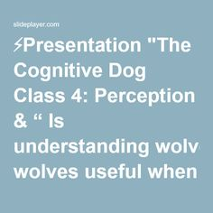 "⚡Presentation ""The Cognitive Dog Class 4: Perception & "" Is understanding wolves useful when training dogs?"""""