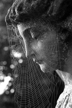 Cemetery statuary veiled in a spider web Cemetery Angels, Cemetery Statues, Cemetery Art, Belle Photo, Black And White Photography, Art Photography, Bill Brandt Photography, Alphabet Photography, Classic Photography