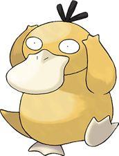 Psyduck Pokédex: stats, moves, evolution & locations | Pokémon Database