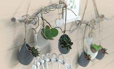Wenn man Pflanzen als kreative Wanddeko in Szene setzt, ziehen die farbenfrohen Blüher und pflegeleichten Grünpflanzen garantiert alle Blicke auf sich.