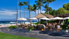 Beach Tree Bar & Lounge in Kona | Four Seasons Resort Hualalai