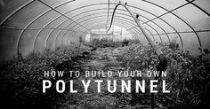 How To Build Your Own Polytunnel - Epic Gardening