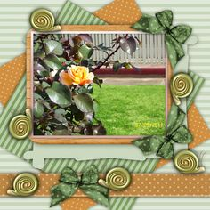 [MN-A] 7 Sept 2011, Summer 511, Scrap WOW, My Memories 1