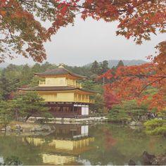 Kinkakuji temple. Kyoto Japan