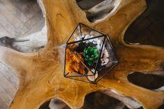 terariu-plante-suculente-icosaedru-echeveria-licheni-piatra-alb-greenarium Terrarium, Home Decor, Terrariums, Decoration Home, Room Decor, Home Interior Design, Home Decoration, Interior Design