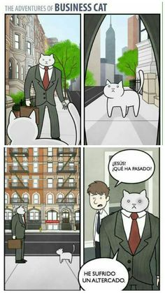 The Adventures of Business Cat #9 #gatos