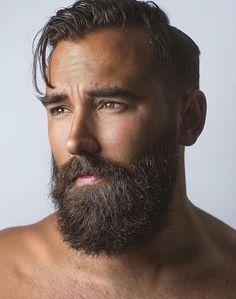 https://i.pinimg.com/564x/8f/14/37/8f1437a870021535d8db0078a5a9f008.jpg #beardeddragonideas