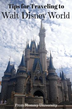 Tips for Traveling to Walt Disney World What to Bring for an Infant. If you are bringing an infant to Disney World then Mommy University has compiled a list of tips at www. Road Trip With Kids, Travel With Kids, Family Travel, Disney World Tips And Tricks, Disney Tips, Disney Stuff, Disney Magic, Disney Travel Agents, Walt Disney World Vacations