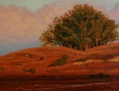 Morning light in the Point Reyes Wilderness area hitting the clouds, hills and eucalyptus trees California Coast, Northern California, Oil Painting For Sale, Painting Trees, Painting Art, Sunrise Landscape, Western Landscape, Morning Light, Art Forms